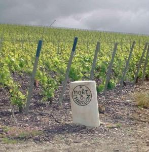 En Champagne, des bornes indiquent clairement lidentité de l'illustre propriétaire des vignes... - Copyrignt Quitou