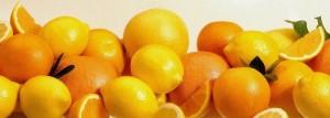 agrumes-citrons-oranges