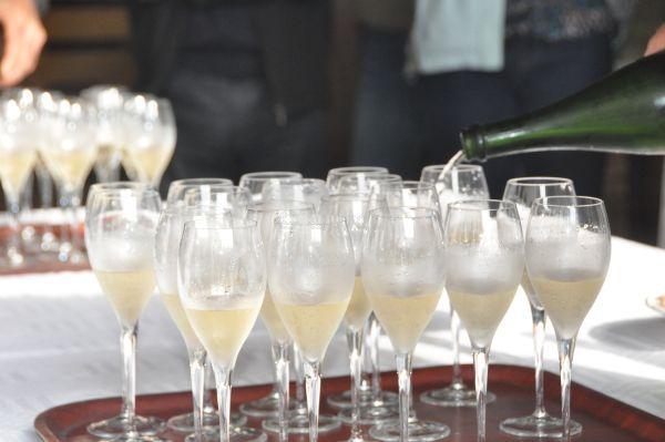 Dégustation de champagne chez Goulin-Roualet à Sacy