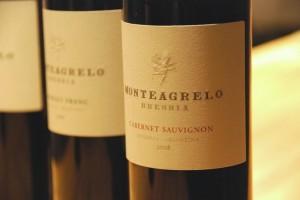 Cabernet Sauvignon 2008 - Monteagrelo - Bressia Bodega