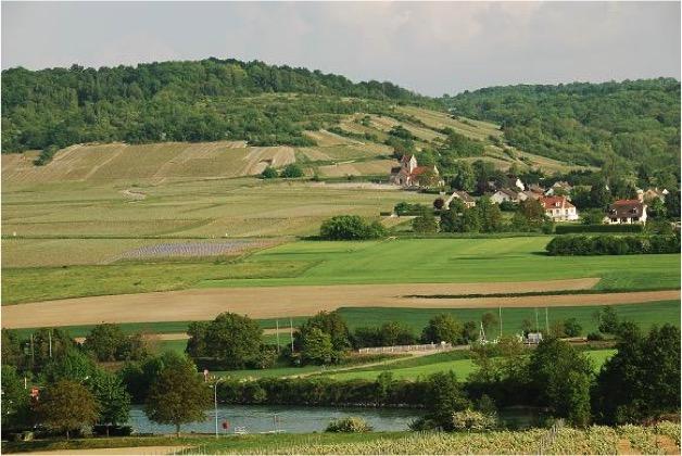 Coteaux de la Vallée de la Marne
